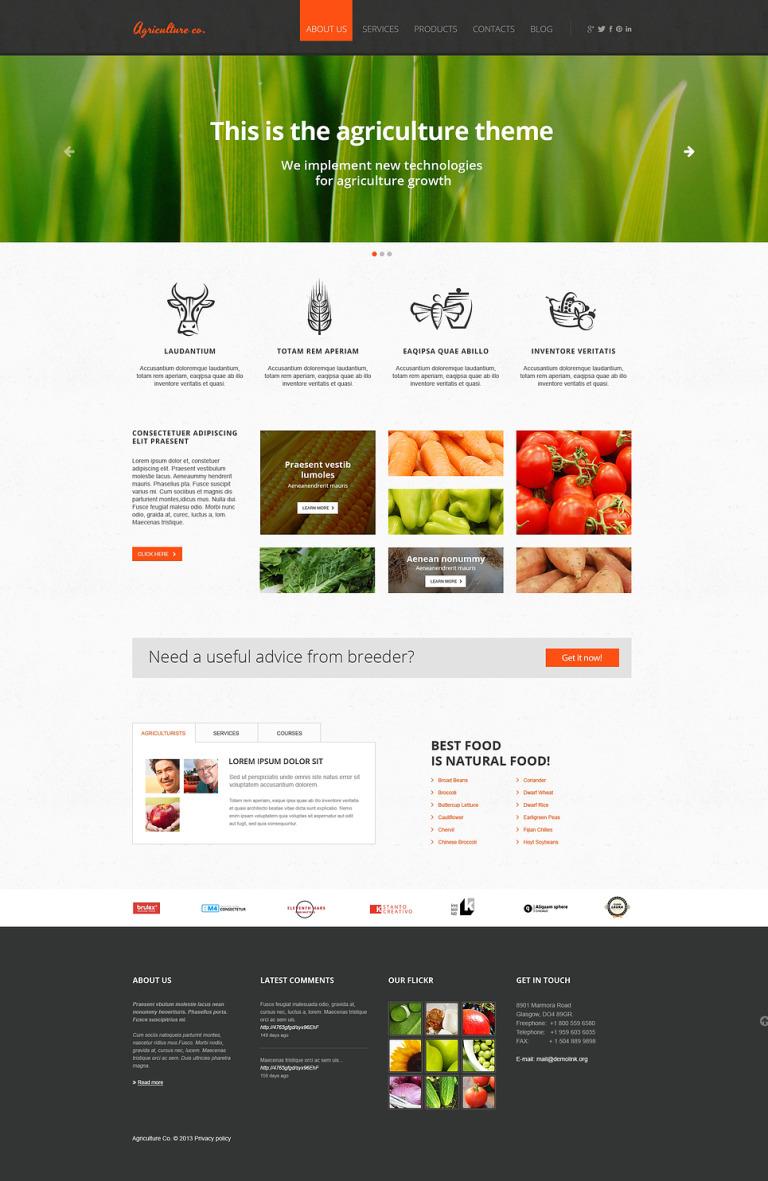 Vegetable Responsive Website Template New Screenshots BIG