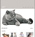 Animals & Pets WordPress Template 47538