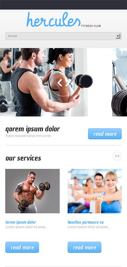 WordPress Theme/Template 47540 Main Page Screenshot