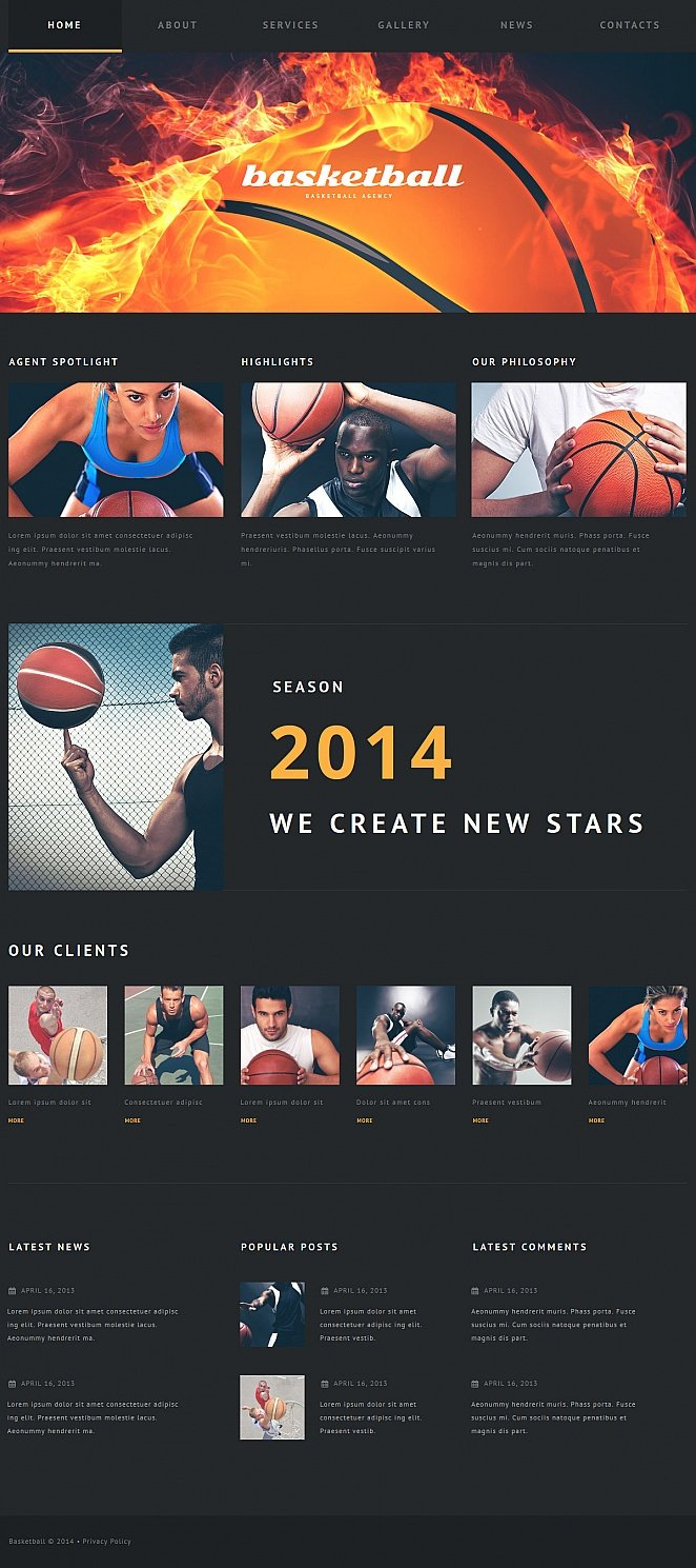 Basketball Website Template with Dark Background - image