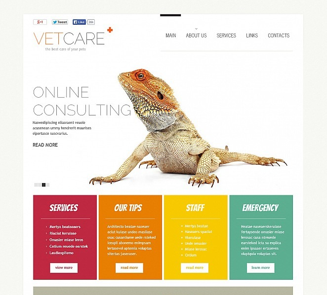 Premium Flash CMS Template over Dierenarts New Screenshots BIG
