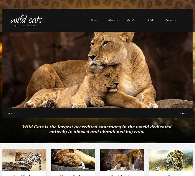 Szablon Moto CMS HTML #47739 na temat: fauna i flora New Screenshots BIG
