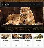 Animals & Pets Moto CMS HTML  Template 47739