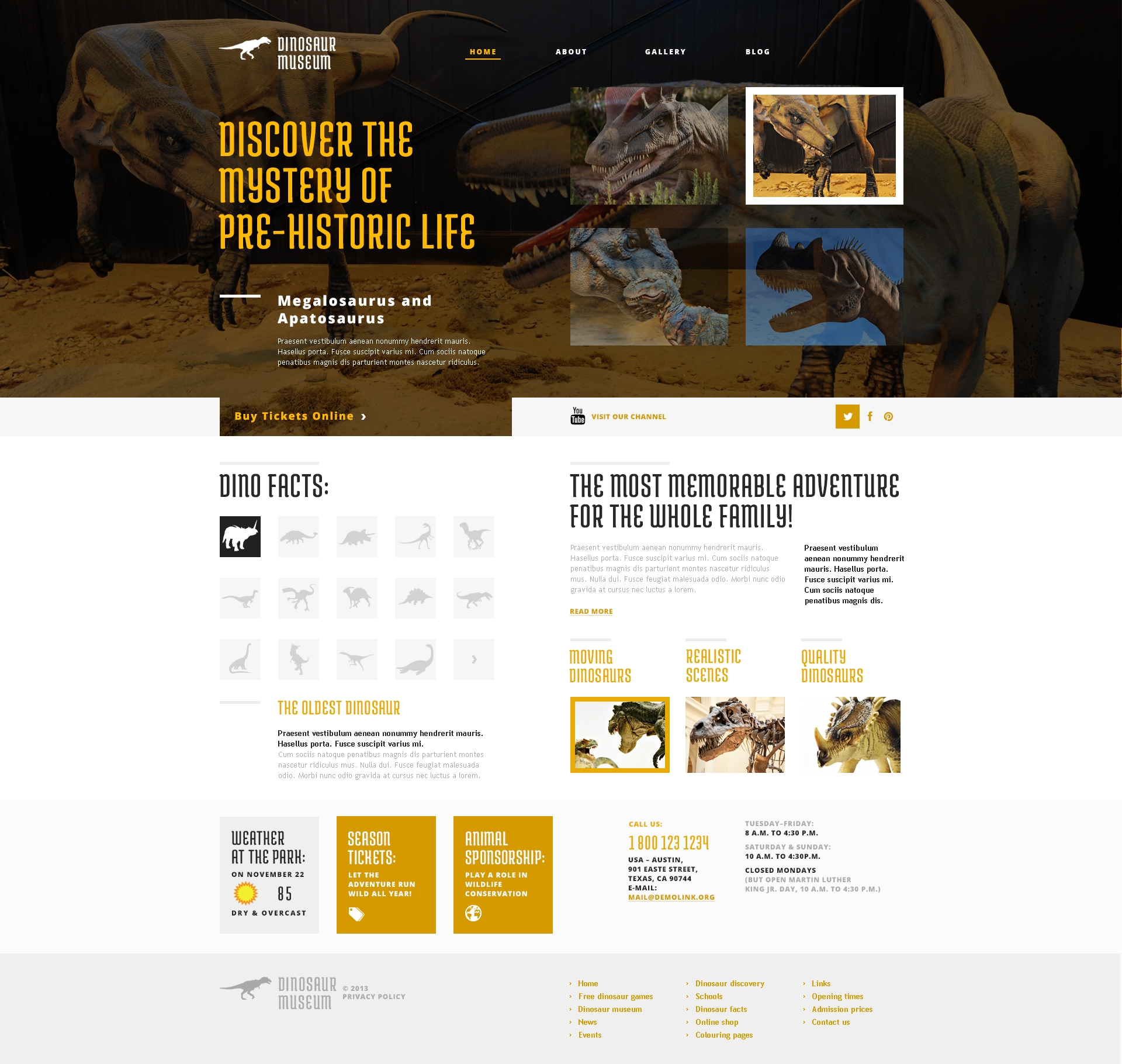 Responsive Discovering the Unknown Wordpress #47786