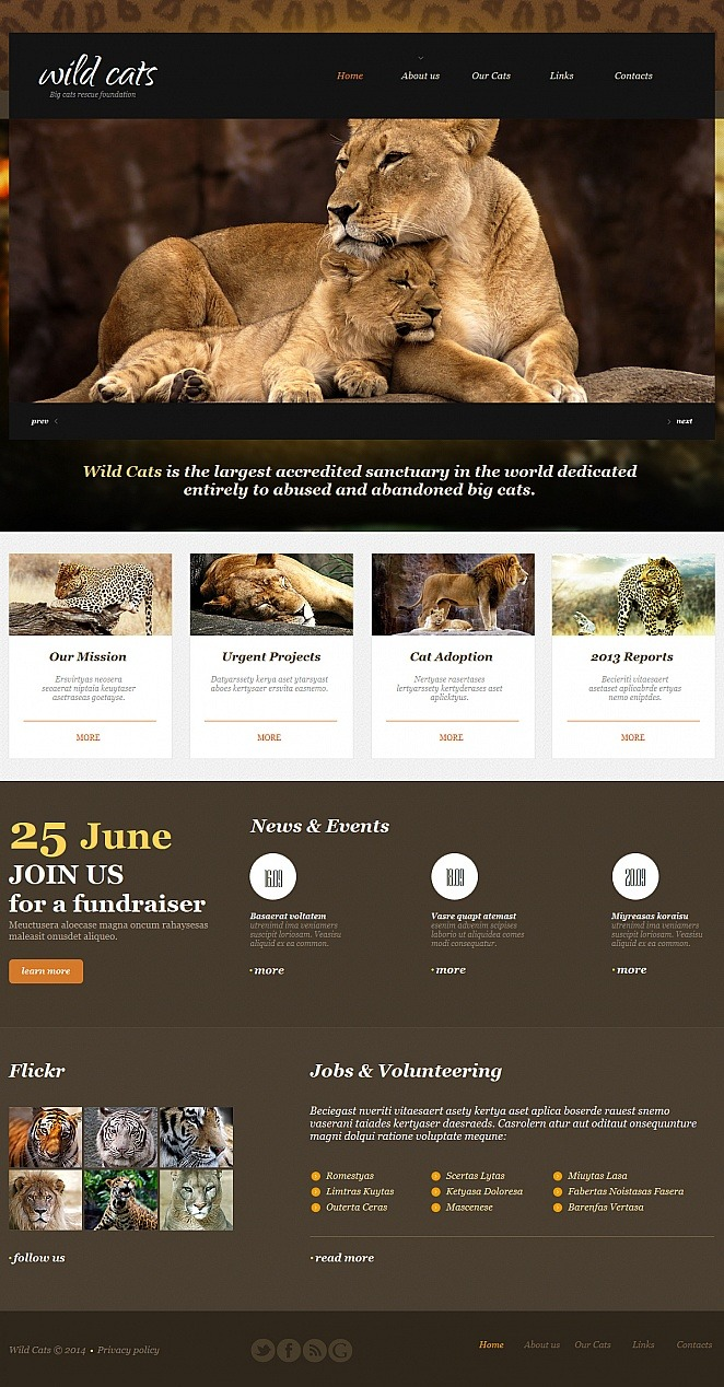 Wild Life Moto CMS HTML Template New Screenshots BIG