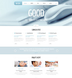 WordPress Template 47830