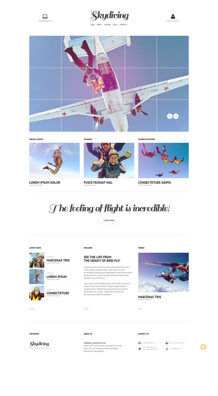 Skydiving Responsive Website Template New Screenshots BIG