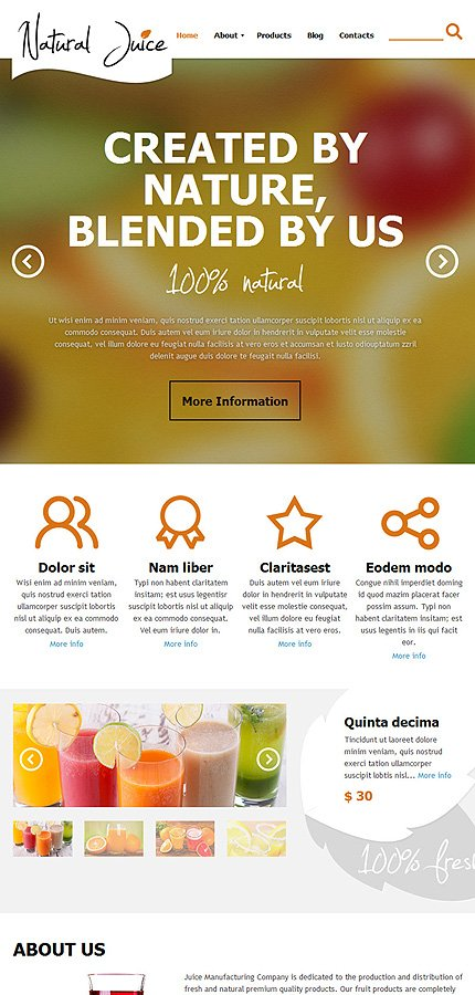 Joomla Theme/Template 47917 Main Page Screenshot