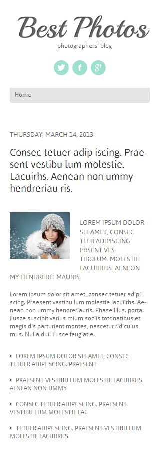 WordPress Theme/Template 47925 Main Page Screenshot