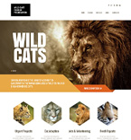 Animals & Pets Website  Template 47932