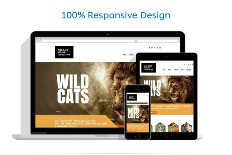 Wild Life Responsive Website Template - What website template is this