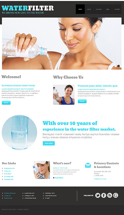WordPress Theme/Template 47940 Main Page Screenshot