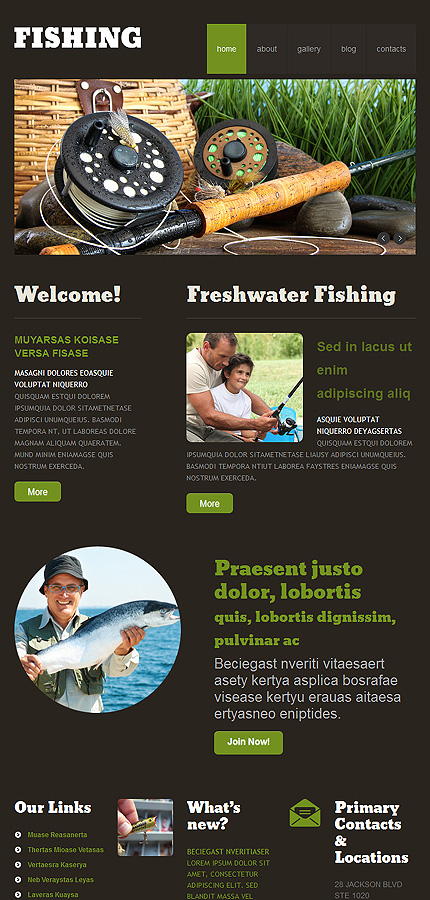 WordPress Theme/Template 47941 Main Page Screenshot
