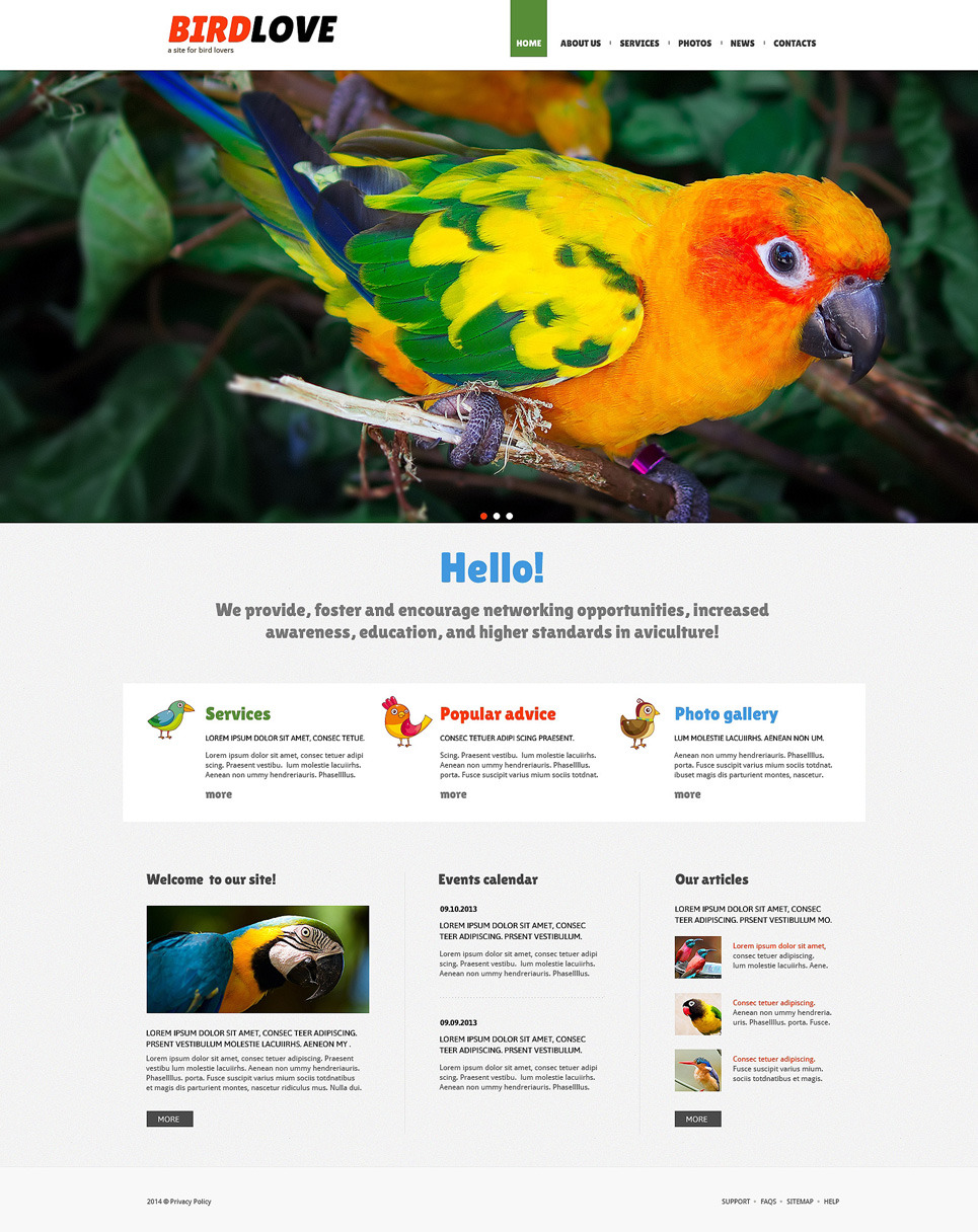 Birds Responsive Joomla Template New Screenshots BIG