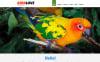 Responzivní Joomla šablona na téma Ptáci New Screenshots BIG