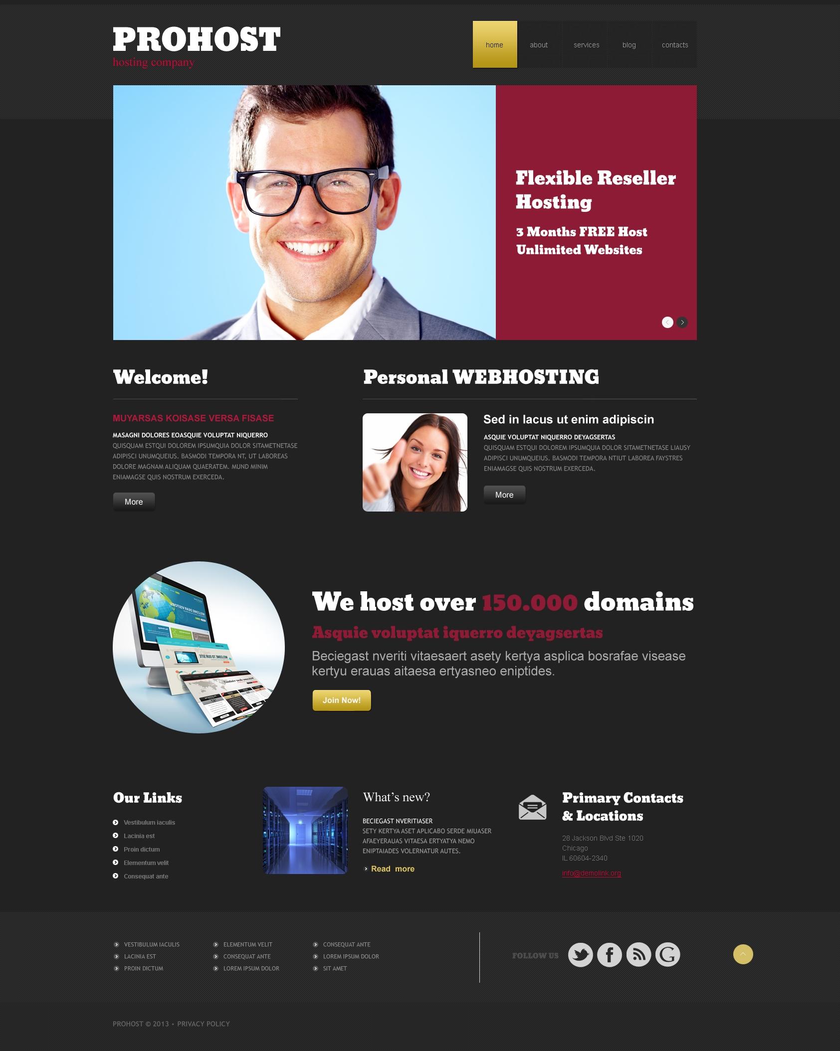 Thème WordPress adaptatif pour site de société d'hébergement #47938 - screenshot