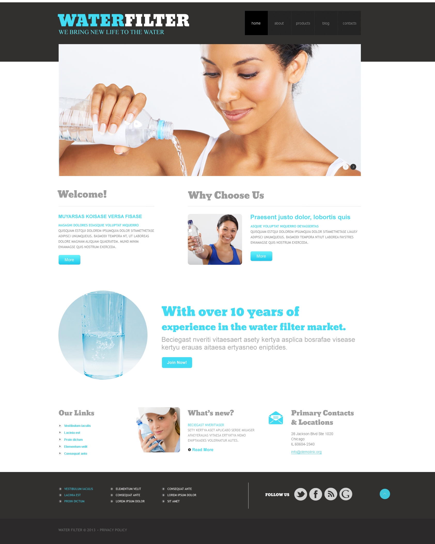 Water Responsive WordPress Theme - screenshot