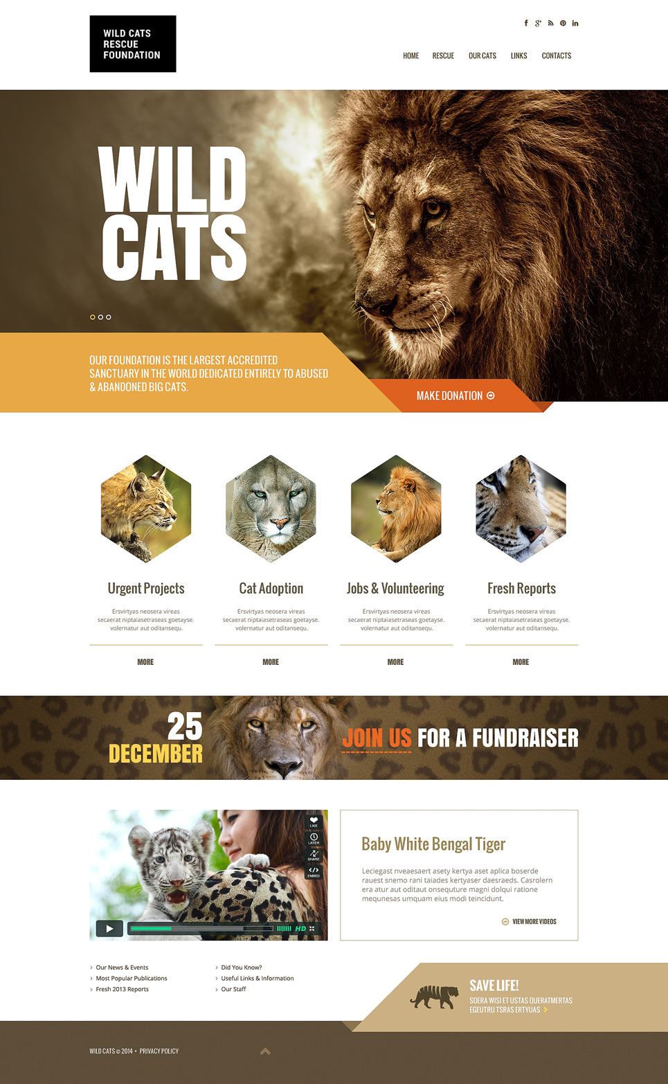 Wild Life Responsive Website Template New Screenshots BIG