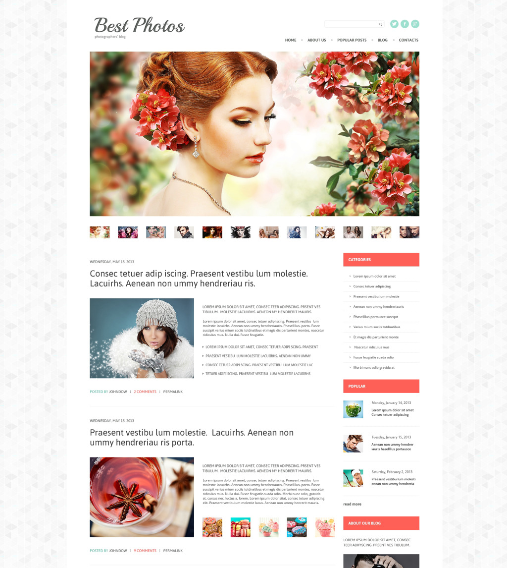 Wordpress Themes Für Fotografen