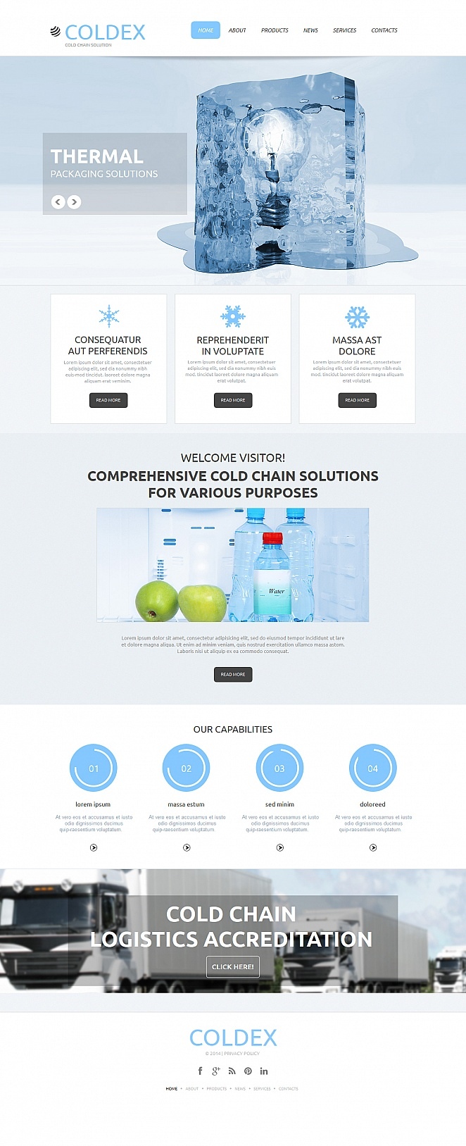 Cold Chain Logistics Website Template - image