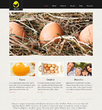 Agriculture Website  Template 48176