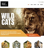 Animals & Pets Moto CMS HTML  Template 48198