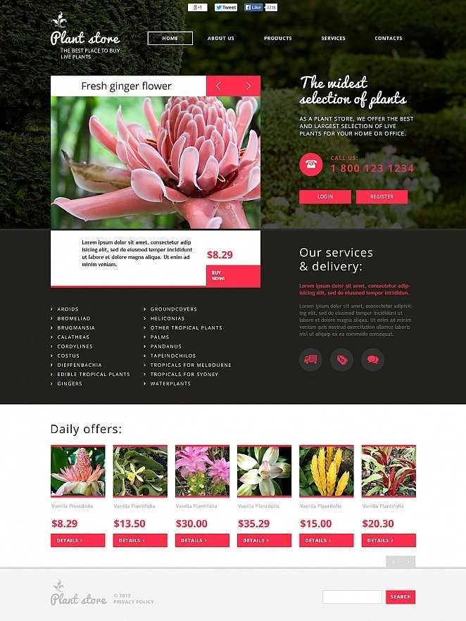 Flower Shop Flash CMS Template New Screenshots BIG