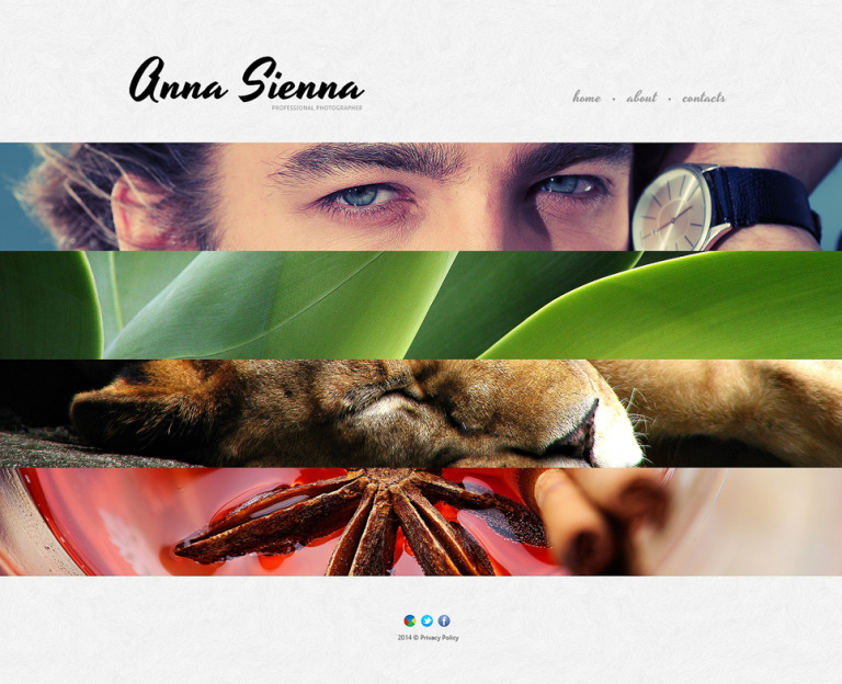 Photographer Portfolio Responsive Website Template New Screenshots BIG