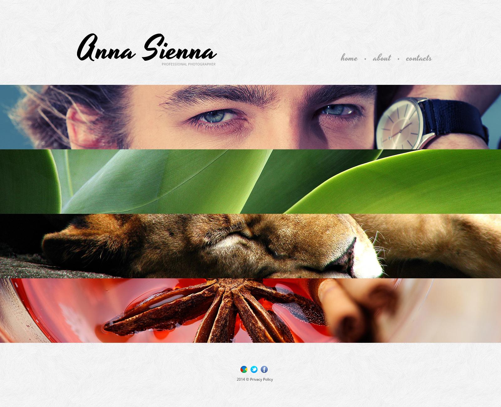 Plantilla Web Responsive para Sitio de Portafolios de fotógrafos #48147 - captura de pantalla