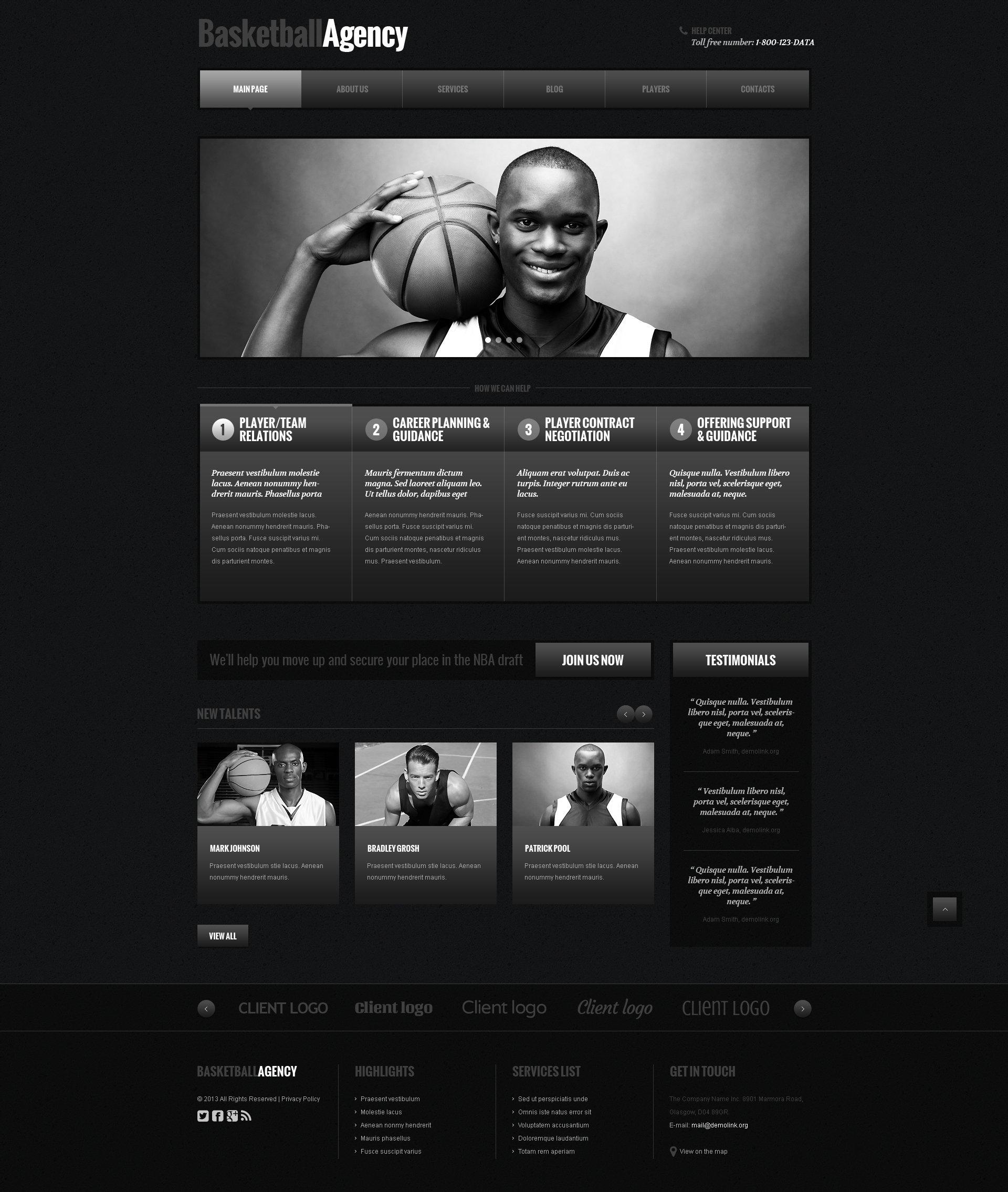 Responsive WordPress thema over Basketball №48105