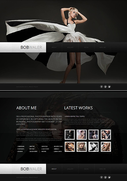 ADOBE Photoshop Template 48204 Home Page Screenshot