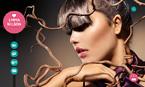 Art & Photography Website  Template 48219