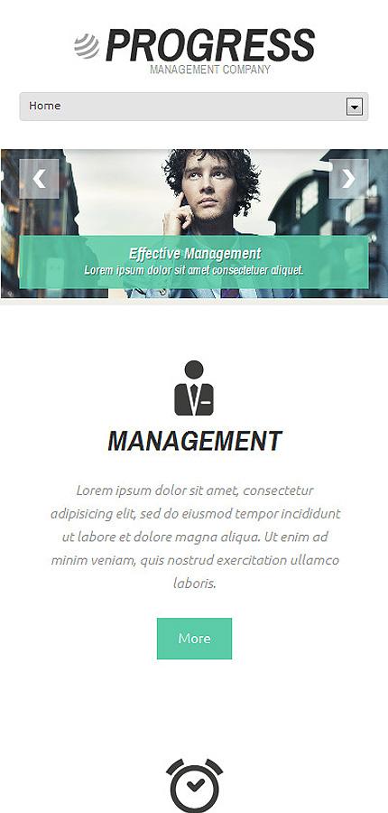 WordPress Theme/Template 48245 Main Page Screenshot