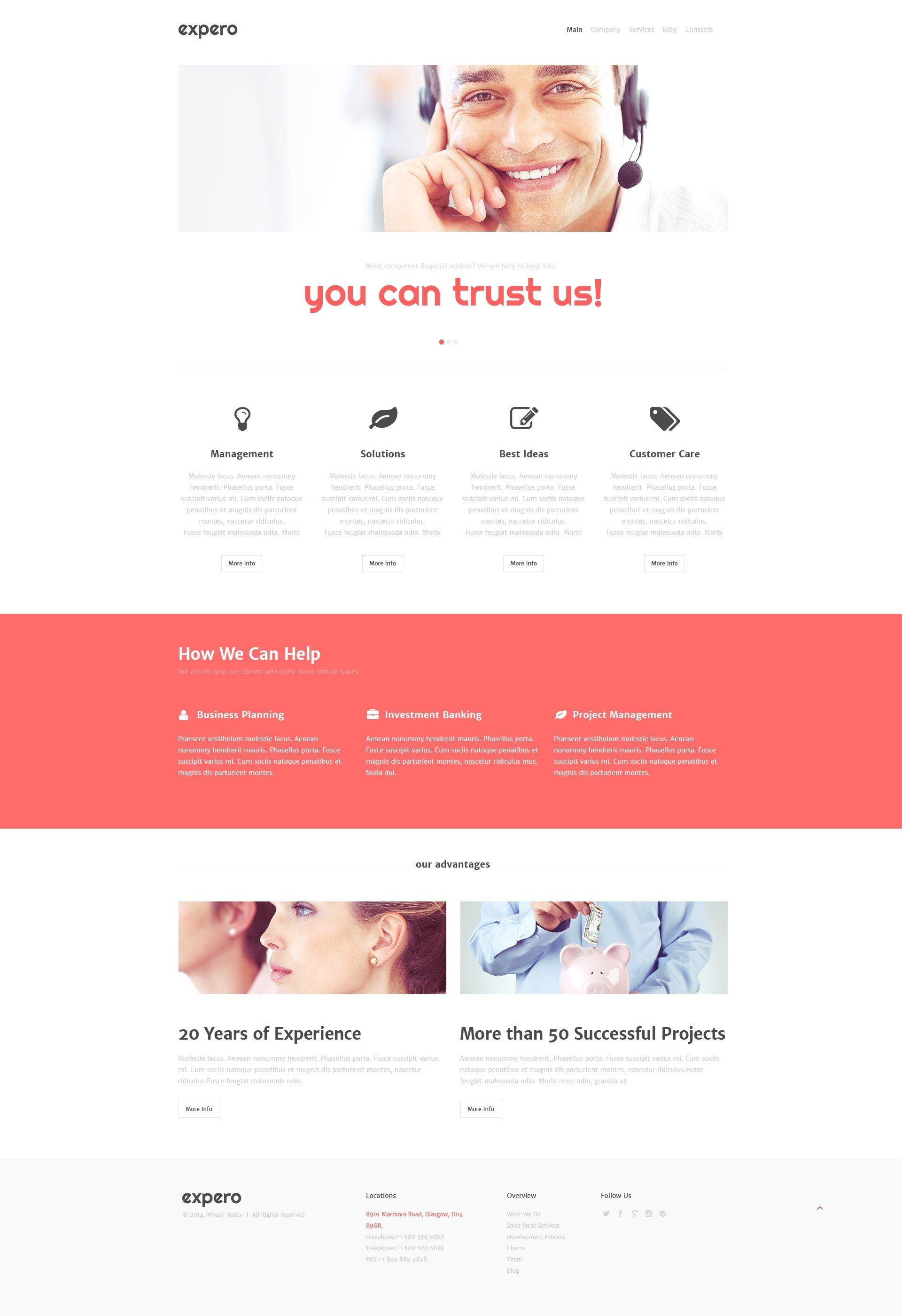 Consulting Firm WordPress Theme - screenshot