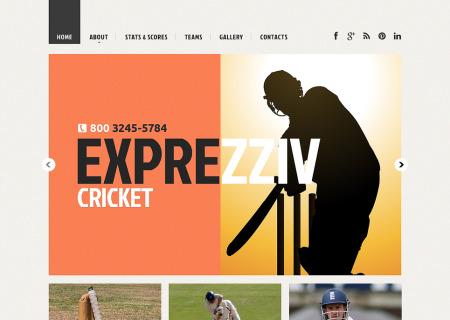 Cricket Responsive