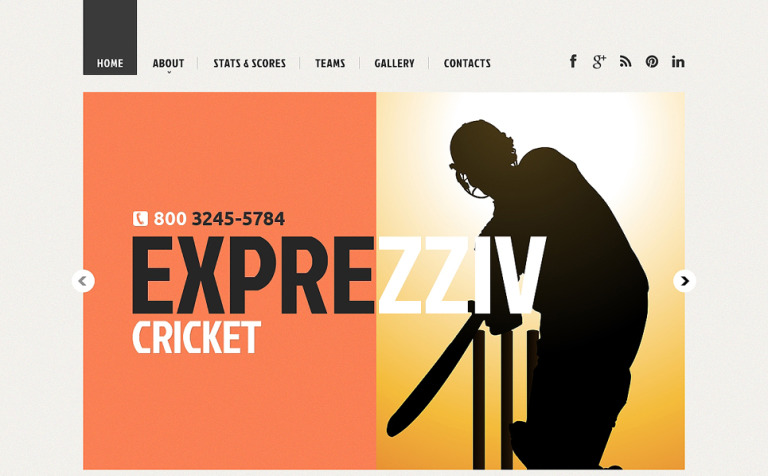 Cricket Responsive Website Template