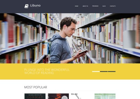 Library Responsive