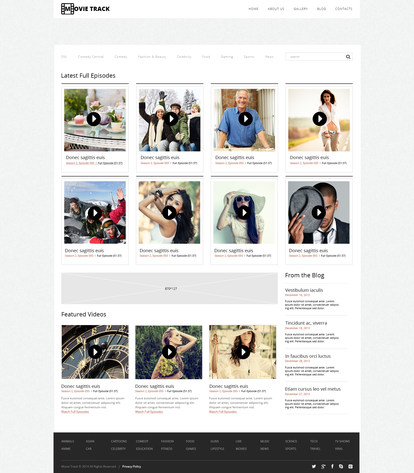 Responsive WordPress thema over Videograaf №48249
