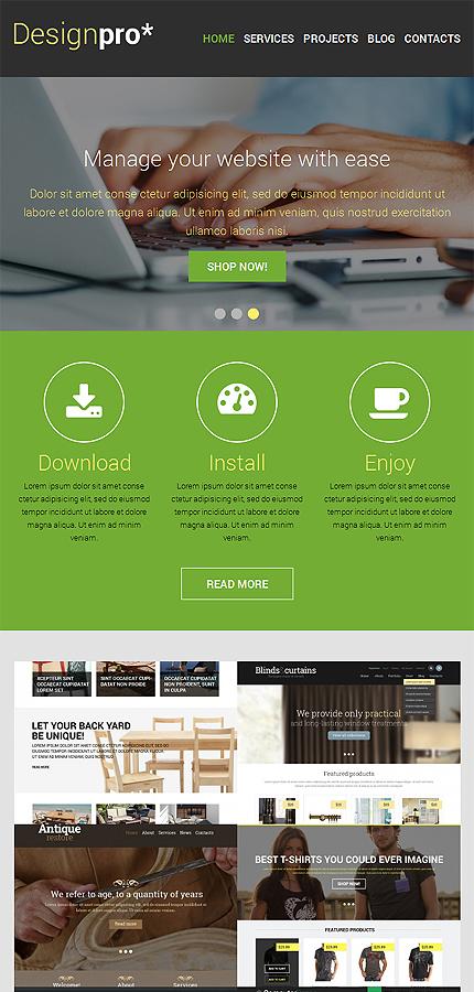 WordPress Theme/Template 48312 Main Page Screenshot