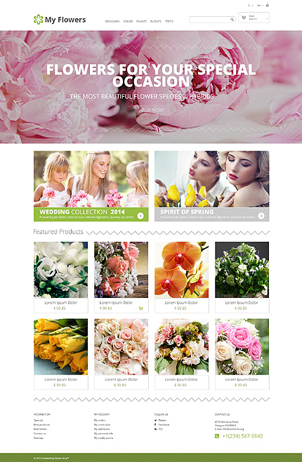 ADOBE Photoshop Template 48318 Home Page Screenshot
