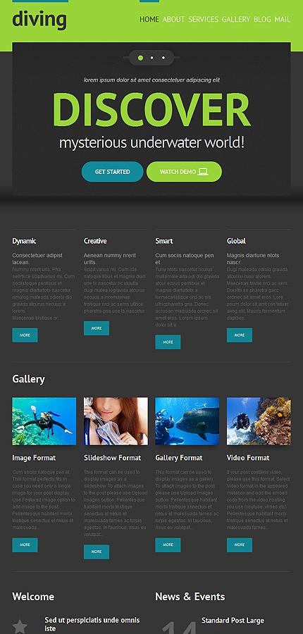 WordPress Theme/Template 48344 Main Page Screenshot