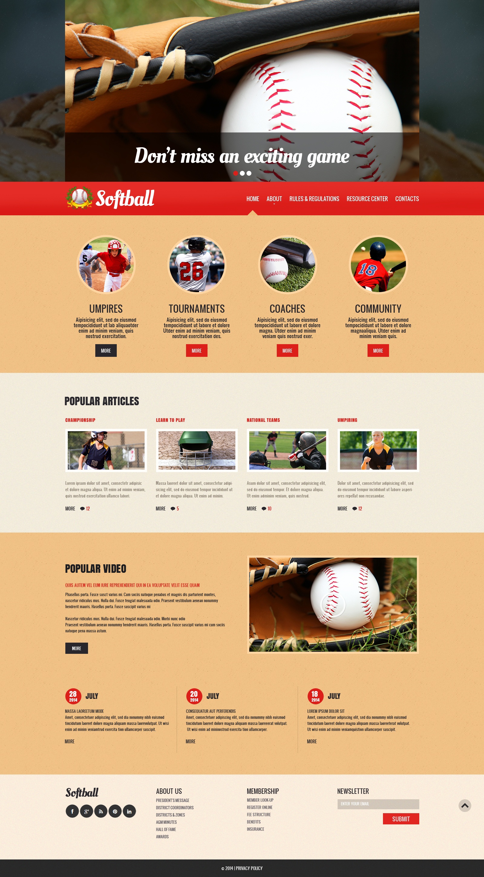 Baseball Responsive Website Template #48433