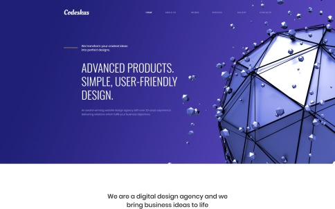 Web Design Company Website - Codeskus