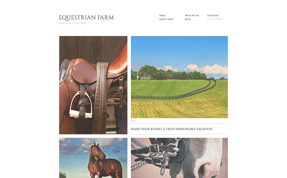 Responsive Website template over Paarden New Screenshots BIG