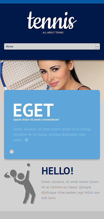 WordPress Theme/Template 48597 Main Page Screenshot