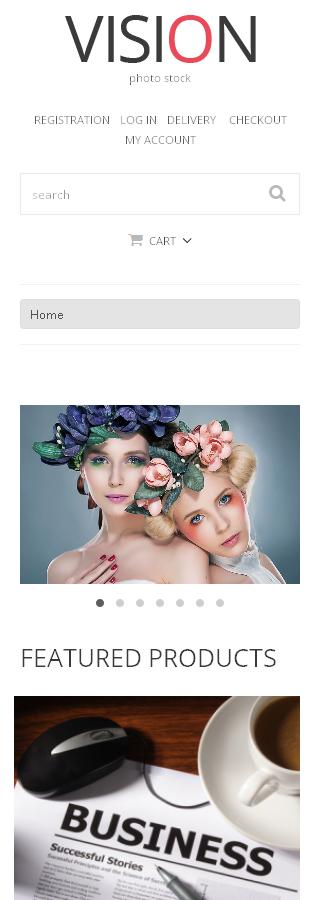 ADOBE Photoshop Template 48610 Home Page Screenshot