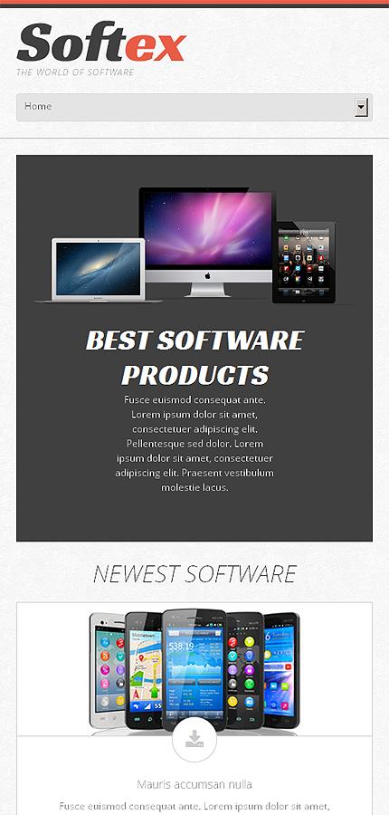 WordPress Theme/Template 48635 Main Page Screenshot