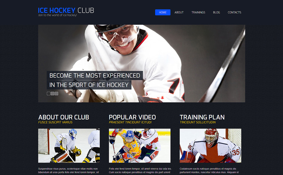 Responsive Joomla Vorlage für Hockey  New Screenshots BIG