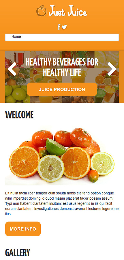Joomla Theme/Template 48671 Main Page Screenshot