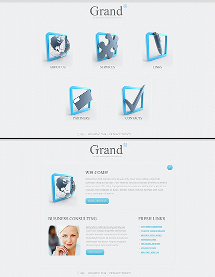 ADOBE Photoshop Template 48679 Home Page Screenshot